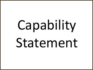 Capability statement