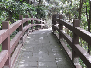 Bridge to vision